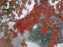 zapada-octombrie-800x600
