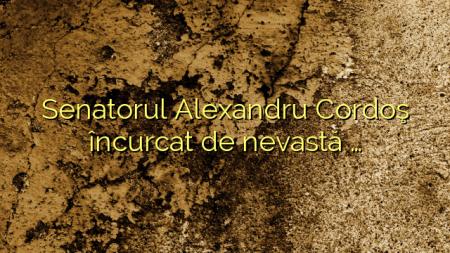 Senatorul Alexandru Cordoş încurcat de nevastă …