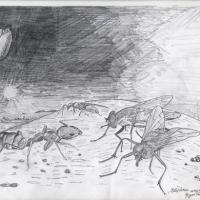 Cine va stăpâni lumea? Insectele vor domni universul!